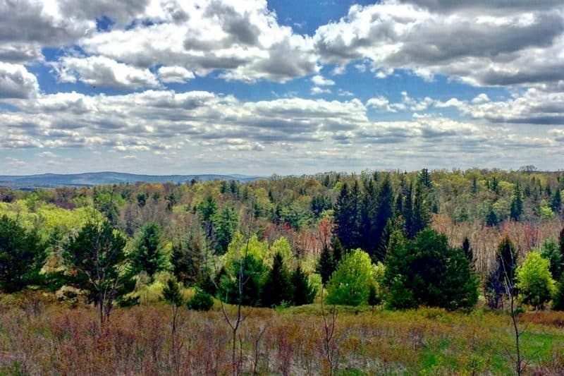 spring land and sky-scape in Esperance (NY)