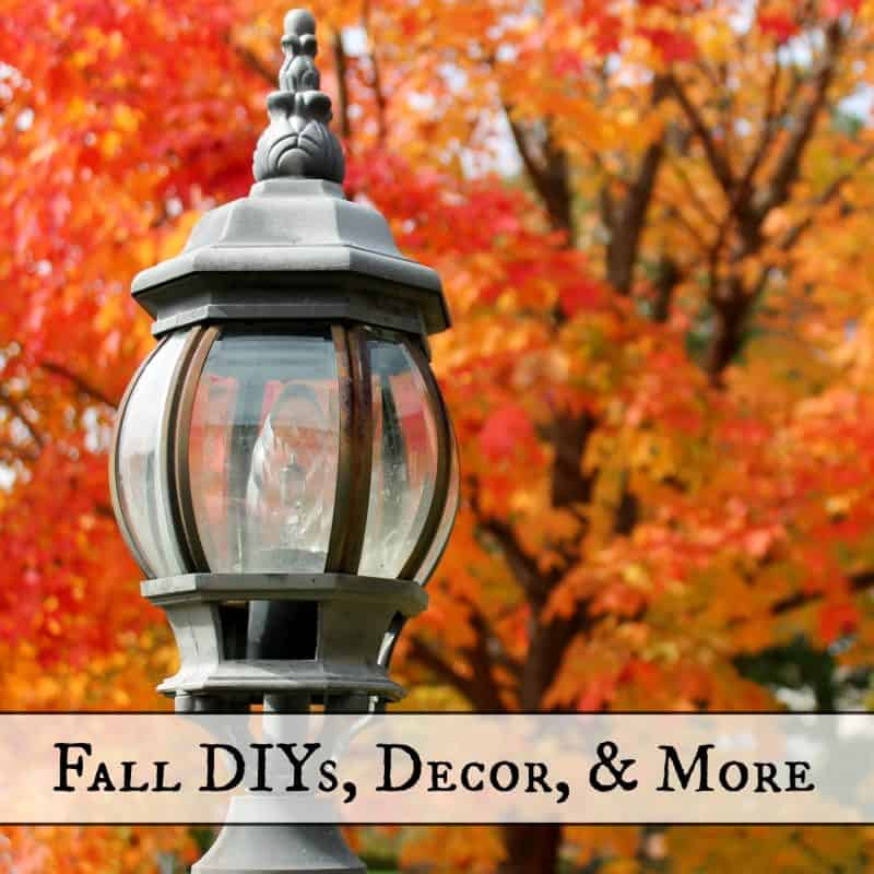 Fall DIYs, Decor, & More