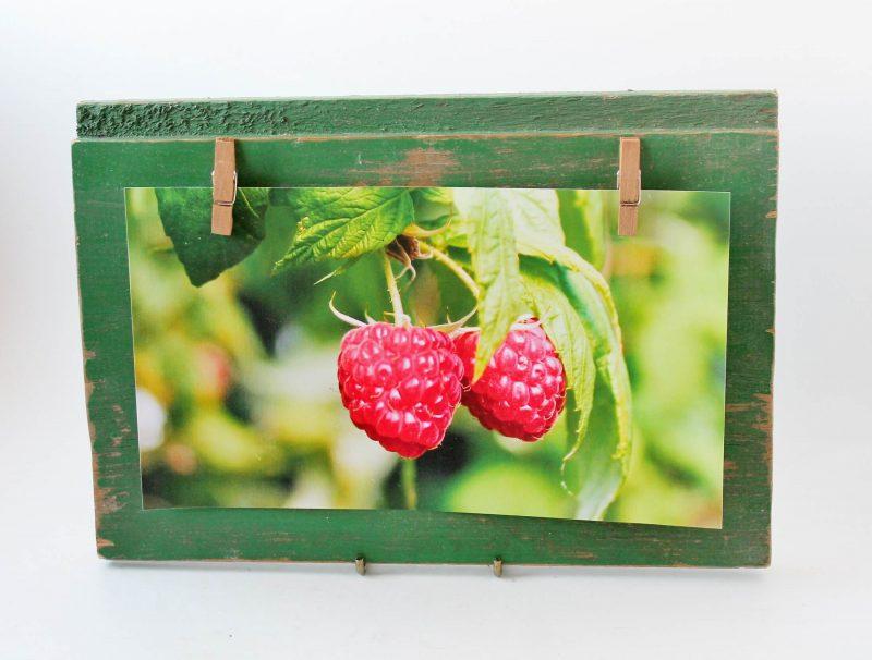 raspberry photo on green vintage wood display