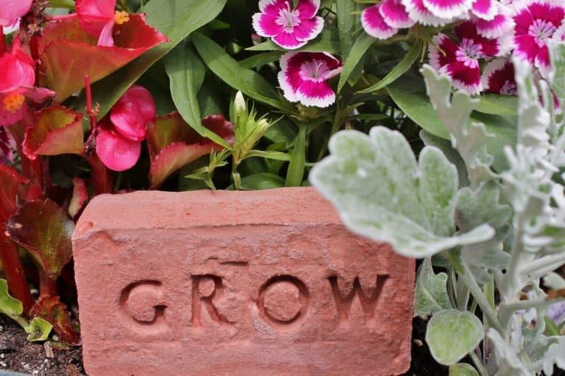 Concrete Herbs Brick: Grow