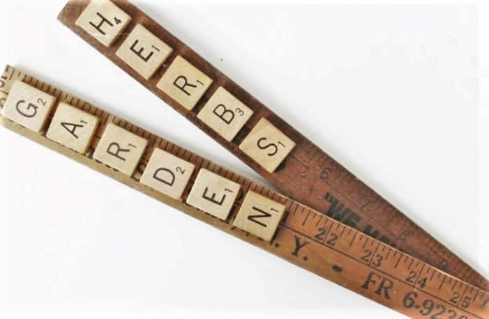 picture about Printable Yardstick titled Classic Yardstick Scrabble Tile Do it yourself Back garden Markers + No cost