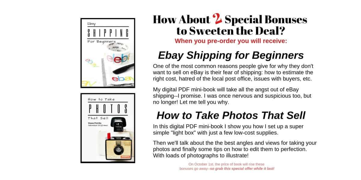 Advert For Ebay Book Bonuses 2 1200x600 Adirondack Girl Heart